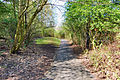 Flickr - ronsaunders47 - LOCAL PATHS.1 BIRCHWOOD WARRINGTON UK..jpg