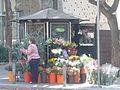 Floristeria a Pedralbes.jpg