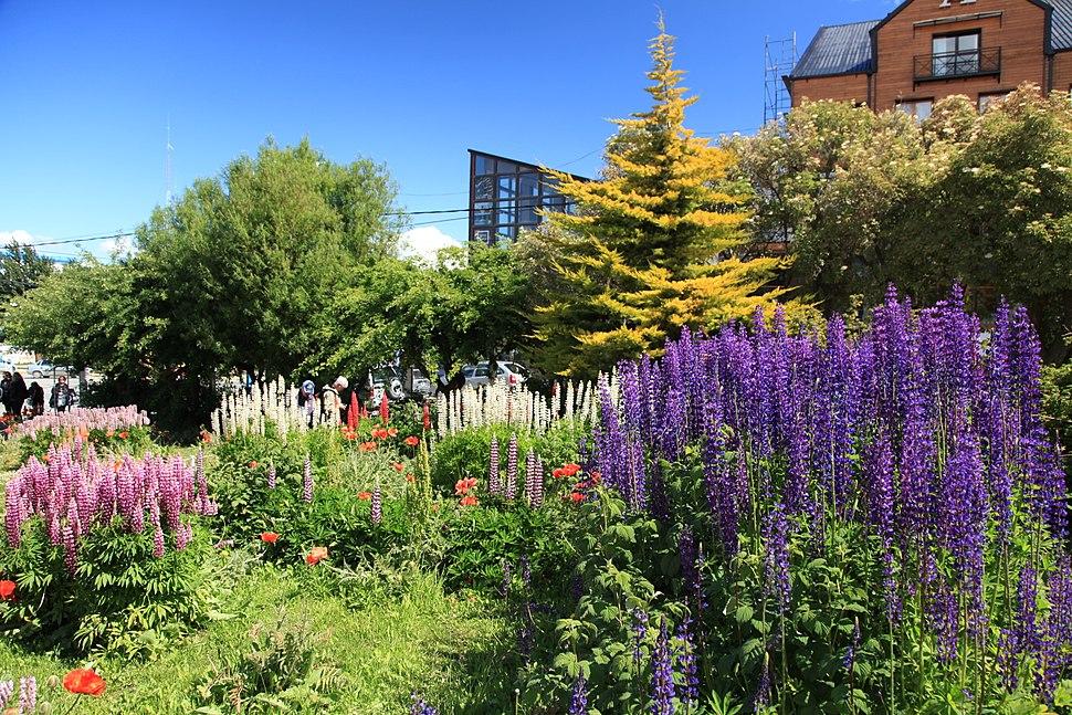 Flower garden in Ushuaia (5542996965)