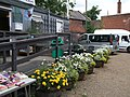 Flowers by Canal tea shop - geograph.org.uk - 1967124.jpg