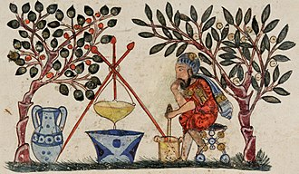 Medicinal plants - A Medieval physician preparing an extract from a medicinal plant, from an Arabic Dioscorides, 1224