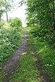 Footpath - geograph.org.uk - 510497.jpg