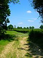 Footpath Junction near Wivelsfield - geograph.org.uk - 844257.jpg