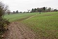Footpath from Old Milverton past Manor Farm - geograph.org.uk - 1570945.jpg