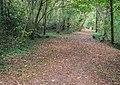 Footpath in Peyrusse-le-Roc 06.jpg