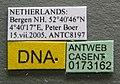 Formica exsecta casent0173162 label 1.jpg