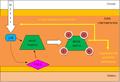Fosforilació HtrA2.png
