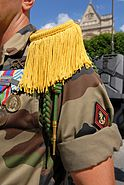 Fourragere 1er RIMa 2007 07 14
