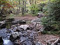 Fox Creek (west of Troutdale, Virginia, USA) 1 (30144005850).jpg