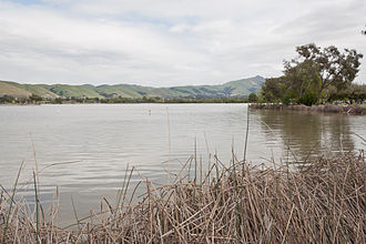 Lake Elizabeth (Fremont, California) - Lake Elizabeth, with reeds in the foreground and mountains in the background.