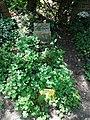 Friedhof heerstraße berlin 2018-05-12 (102).jpg