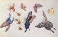FujishimaTakeji-1900-1906-Notebooks Butterflies-1.png