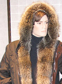Furs - Mixed materials (crop man's raccoon hood).jpg