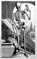 G. Bidloo, Anatomia humani corporis... Wellcome L0030277.jpg