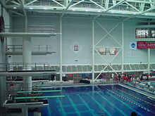 Georgia Bulldogs Swimming And Diving Wikipedia