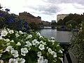 Gamla staden, Malmö, Sweden - panoramio (34).jpg