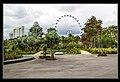 Gardens by the Marina Bay-03 (8320368889).jpg