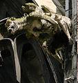 Gargouille Cathédrale de Troyes 190208.jpg