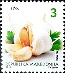Garlic. Stamp of Macedonia.jpg