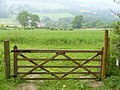 Gate Near West Hanger - geograph.org.uk - 460511.jpg