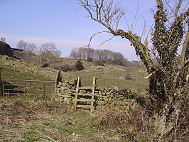 Gate and Stile - geograph.org.uk - 141250.jpg