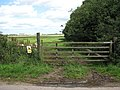Gate into a marsh pasture - geograph.org.uk - 1425115.jpg