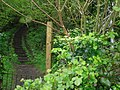Gate leading to the Arthog Woods - geograph.org.uk - 1310516.jpg