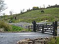 Gateway in the Curlew Mountains - geograph.org.uk - 1610379.jpg
