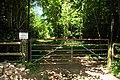 Gateway to Gorse Covert - geograph.org.uk - 1379693.jpg