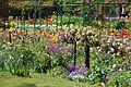 Giverny, Fondation Claude Monet, jardin1.jpg