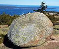 Glacial erratic (Cadillac Mountain, Mt. Desert Island, Maine, USA) 2.jpg