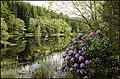 Glencoe Lochan. - panoramio (8).jpg