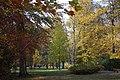 Gliwice - Park Chopina - panoramio (2).jpg
