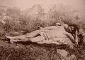 Gloeden, Wilhelm von (1856-1931) - n. 0806 - da - Sicilia mitica Arcadia - p. 41.jpg