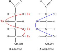 Glucose Wikipedia