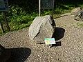 Gneis (Orthogneis) - Fundort Südholstein.jpg