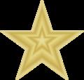 GoldStarforUse.png