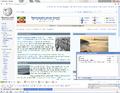 Google Chrome tt.png