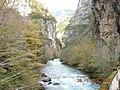Gorge river Lashipse and Yupshara abkhazia - panoramio.jpg