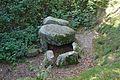 Grabhügel in den Hademarscher Bergen NIK 4238.JPG
