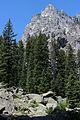 Grand Teton NP 2014 08.JPG