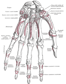 инъекции гиалуроновой кислоты в сустав