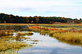Great Meadows National Wildlife Refuge 2007-10-17.jpg
