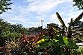 Green Spring Gardens in September (22765467706).jpg