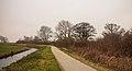 Groep bomen aan fietspad om Langweerderwielen (Langwarder Wielen). Oostkant 05.jpg