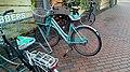 Groninger Belang bicycle seat cover, Winschoten (2019) 06.jpg