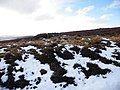 Grouse Butt No 10 on track going to Beinn Bhreac - geograph.org.uk - 1138632.jpg