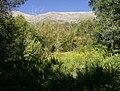 Grove Creek Trail in September - panoramio - photophat (9).jpg