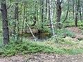 HPIM0276 - panoramio.jpg