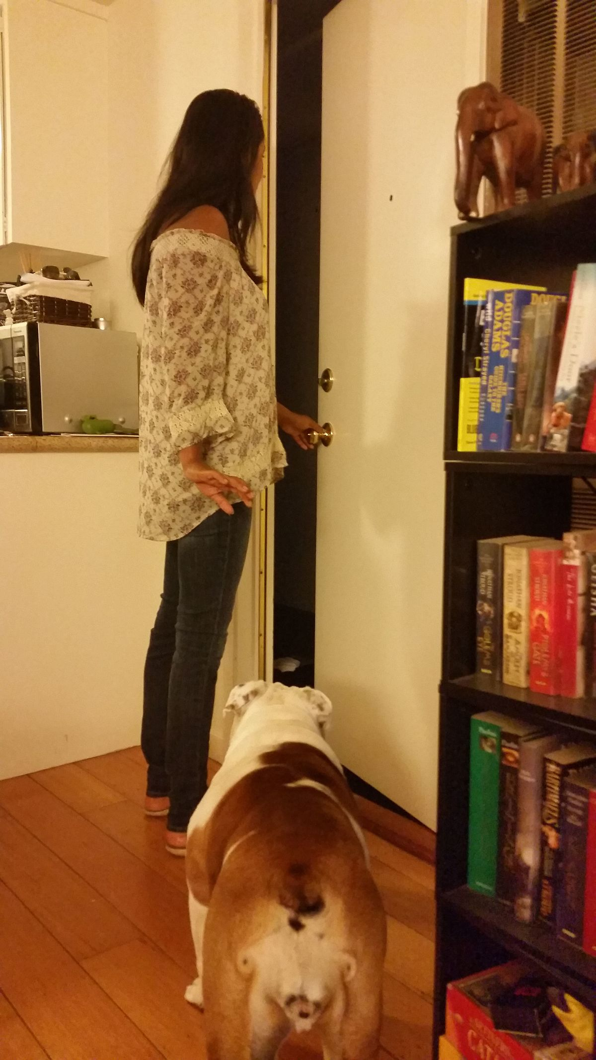 Dog Barks The Whole Time Rover Com